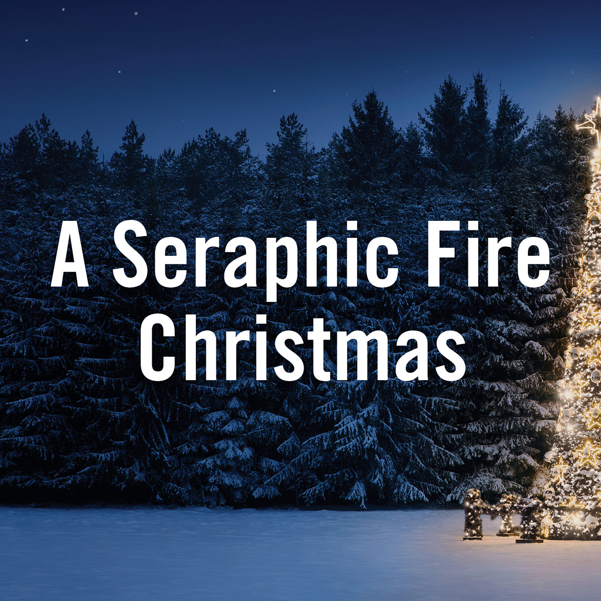 A Seraphic Fire Christmas